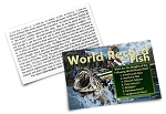 Fishing - Sportsmen - Gospel Tract - 100ct pckg (2