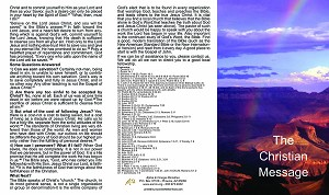 "The Christian Message - Gospel Tract - 6.5"" Tall Tri-fold (25 count pckg) By  Alpha & Omega Ministries"
